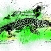Cuban Crocodile: