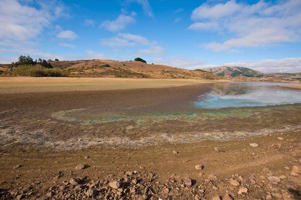 Many Flavors of El Niño Make Prediction Difficult