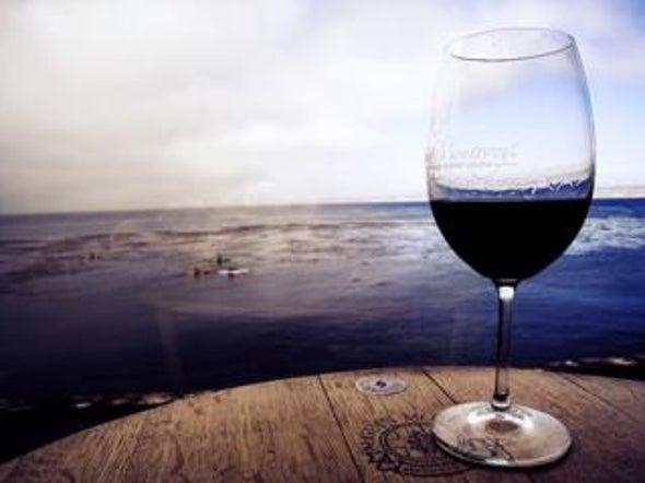 Jeers! Hazardous levels of metals found in wines