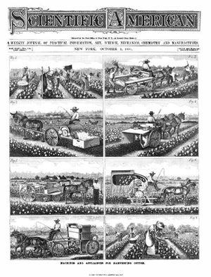 October 01, 1881