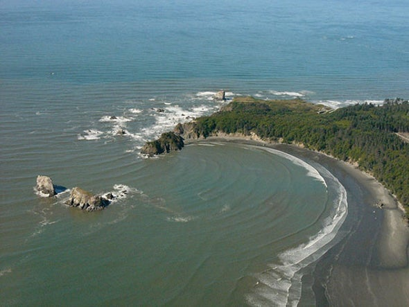 Mysterious Seafloor Methane Begins to Melt Off Washington State Coast