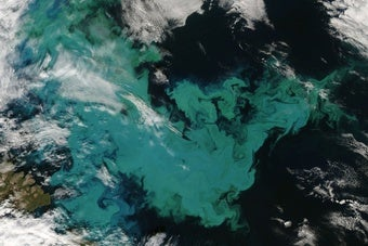 Humans May Be Accidentally Geoengineering the Oceans