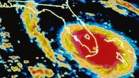 Wacky Florida's Weird Science