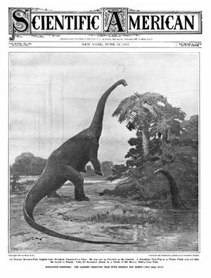 June 15, 1907