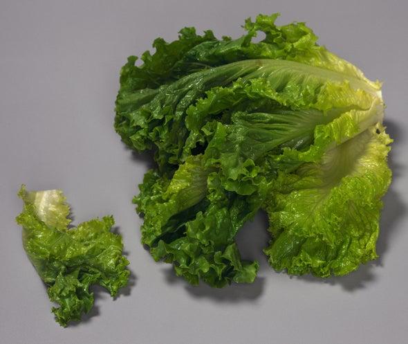 Healthful Eating Requires Supermarket Smarts