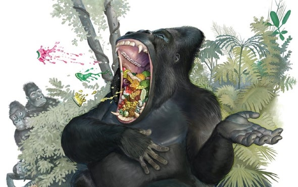 "Gorillas Hum and Sing While They Eat to Say, ""Do Not Disturb"""