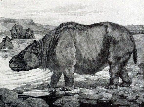 "Mystery of Darwin's ""Strange Animals"" Solved"