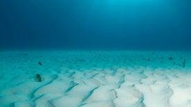 New XPRIZE Challenge: Map the Ocean Floor