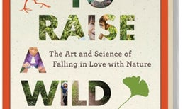 MIND Reviews <i>How to Raise a Wild Child</i>