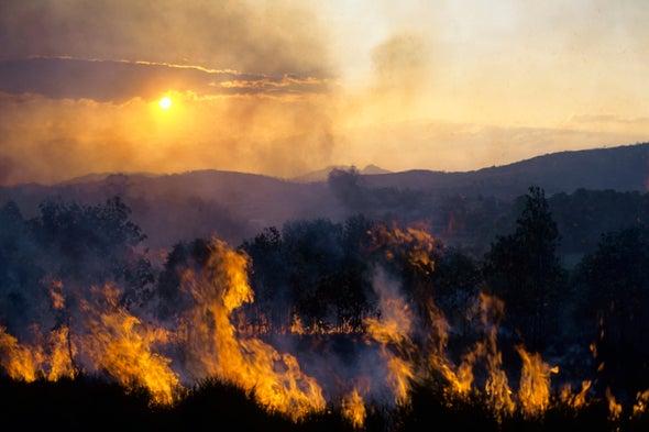 Did Ancient Climate Change Ignite Human Evolution?
