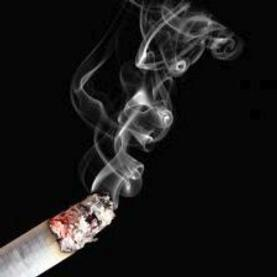 Brain Circuitry behind Cigarette Cravings Revealed