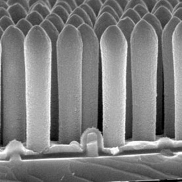 Novel Solar Photovoltaic Cells Achieve Record Efficiency Using Nanoscale Structures