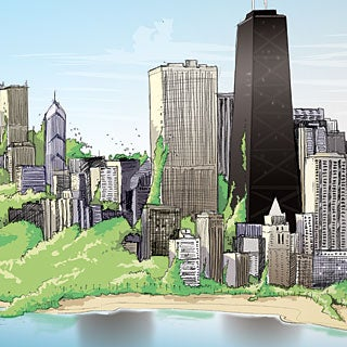 Chicago's Plans to Go Green
