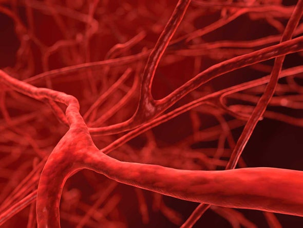 Magnetically Guided Gene Therapy Heals Blood Vessels