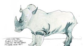 Ralph Steadman's World of Endangered Animals