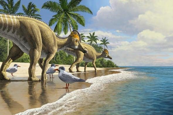 Duckbill Dino Odyssey Ended in Africa