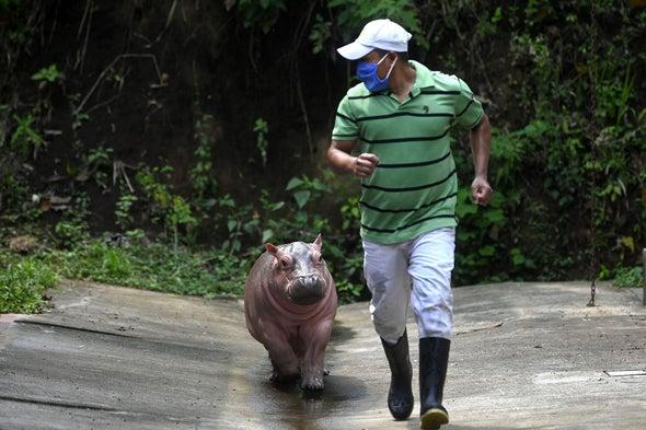 Zoos Find Creative Ways to Cope with Coronavirus Lockdowns