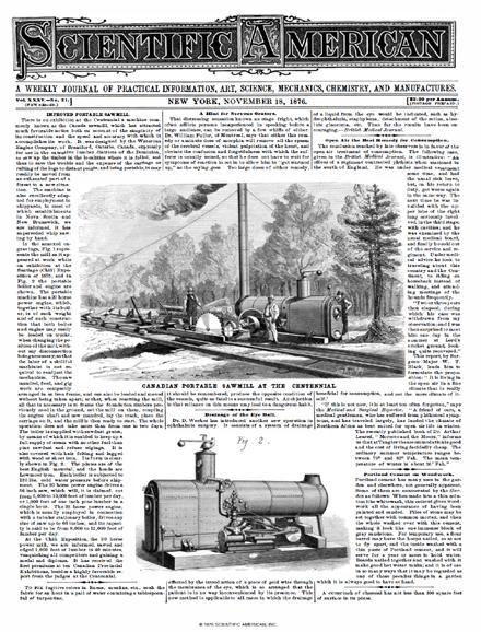 November 18, 1876