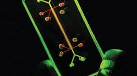 Organs-on-a-Chip for Faster Drug Development