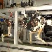 Cheetah Robot a Model of Speed and Efficiency