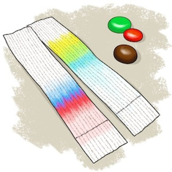Solution Science: Colorful Candy Chromatography