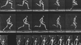 Surprising Ways That Exercise Helps Us