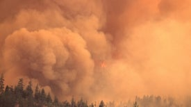 Severe Wildfires Rekindle Controversial Call for Deliberate Burns