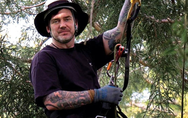 Cool Jobs: Professional Tree Climber
