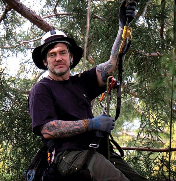 Cool Jobs: Professional Tree Climber - Scientific American
