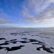 The Arctic Is Seriously Weird Right Now
