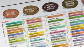 What's Inside? Meat vs. Meatless Burgers