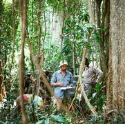Bitter Reality: Most Wild Coffee Species Risk Extinction Worldwide