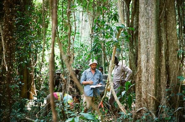 Bitter Reality: Most Wild Coffee Species Risk Extinction Worldwide