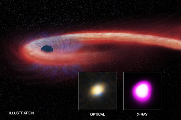 Black Hole Binges on Record-Setting Stellar Meal
