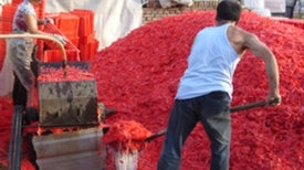 How Beijing--and the Rest of China--Recycles Plastic [Excerpt]