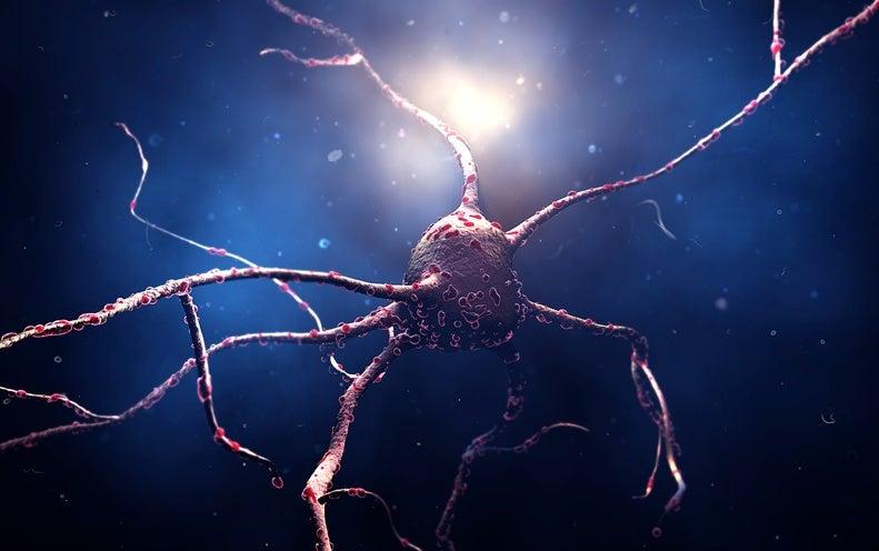 scientificamerican.com - David Cyranoski - Reprogrammed Stem Cells Implanted into Patient with Parkinson's Disease
