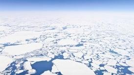 Arctic Sea Ice Hits New January Low