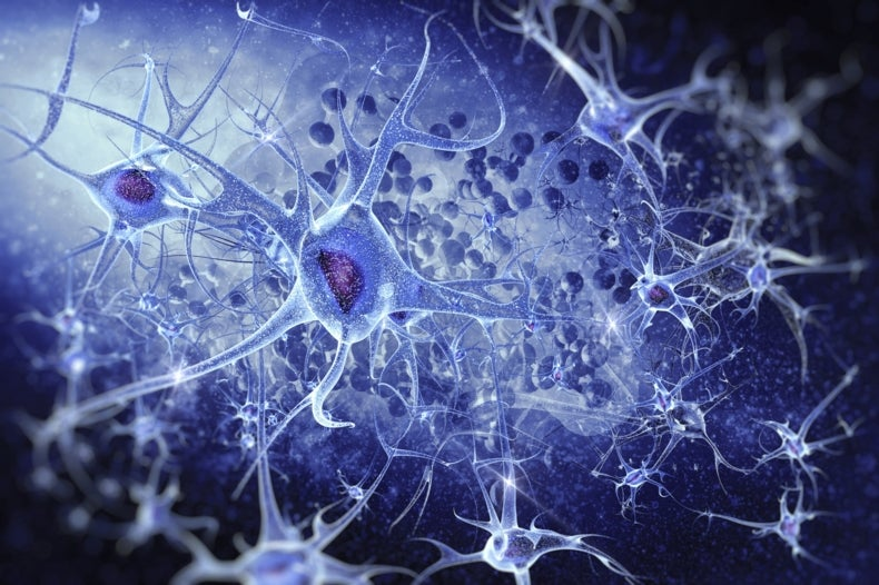 Flagship Brain Project Releases Neuro-Computing Tools