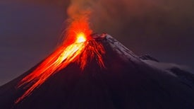 Giant Eruptions and Giant Extinctions [Video]