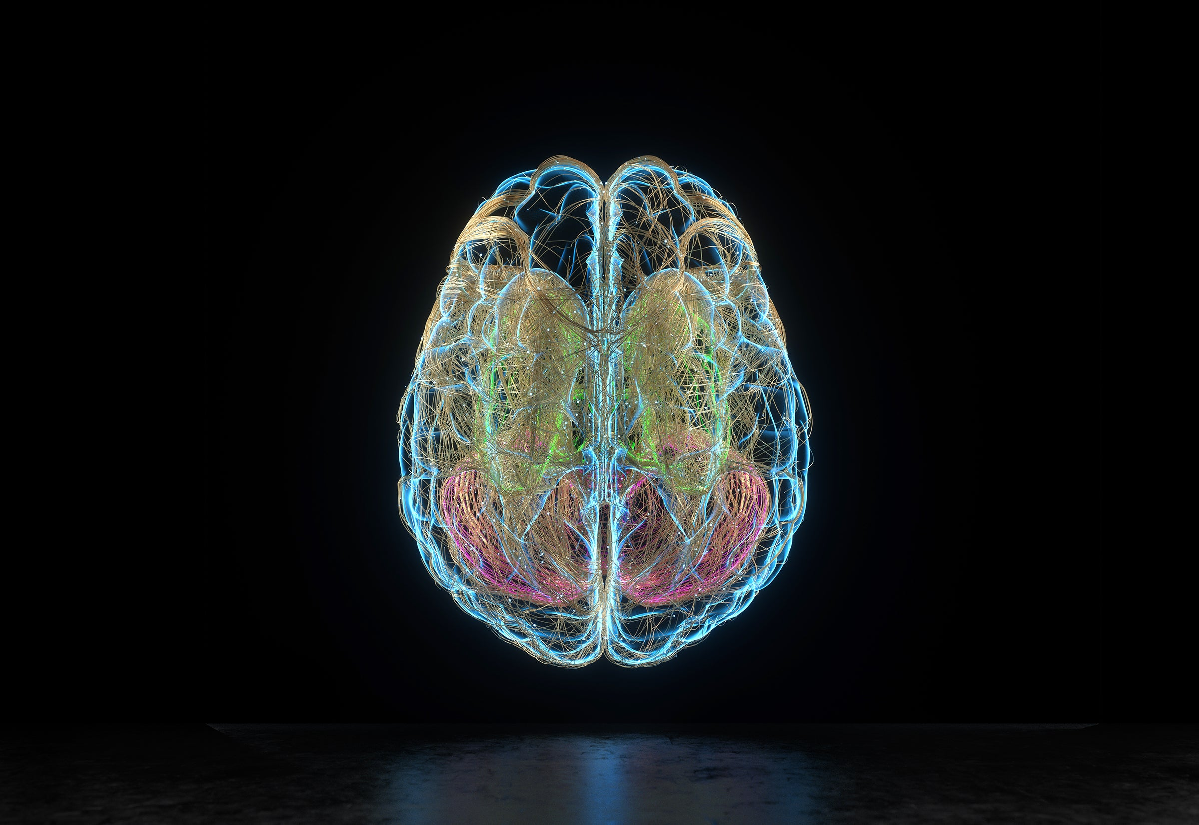 Brain Sides Both Busy In New Language Learning