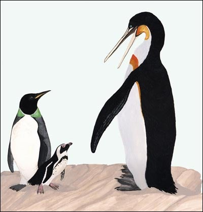 That's One Big Penguin