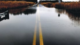 Cities Adapt to Extreme Weather Despite Federal Inaction