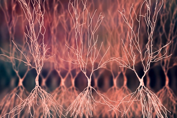 Better Memory through Electrical Brain Ripples