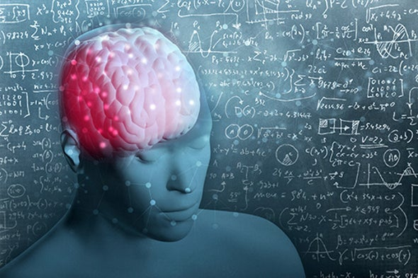 What Makes Our Brains Special?