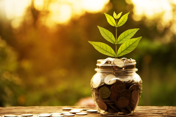 Are 'Green Banks' Really Better for the Environment?