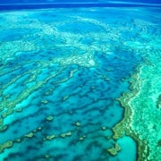 Recent Ocean Heat Waves Have 'Forever' Altered Great Barrier Reef