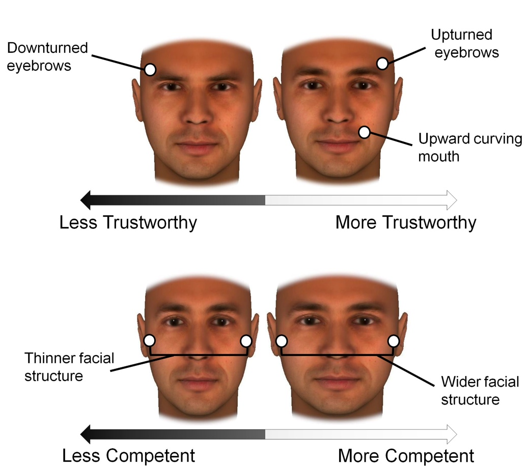 Your Facial Bone Structure Has A Big Influence On How People See You Scientific American