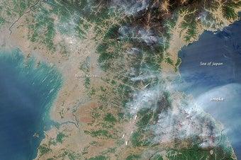 With Widespread Deforestation, North Korea Faces an Environmental Crisis