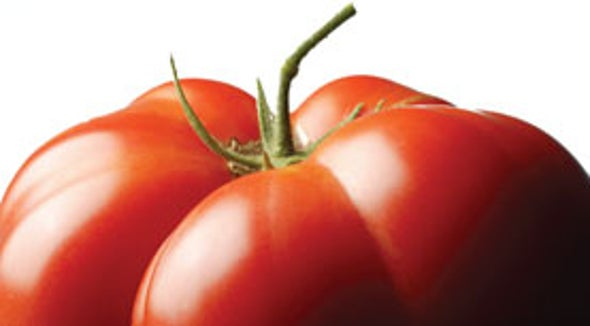 Why Heirloom Tomatoes Taste So Good