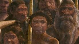 Oldest Ancient-Human DNA Details Dawn of Neandertals